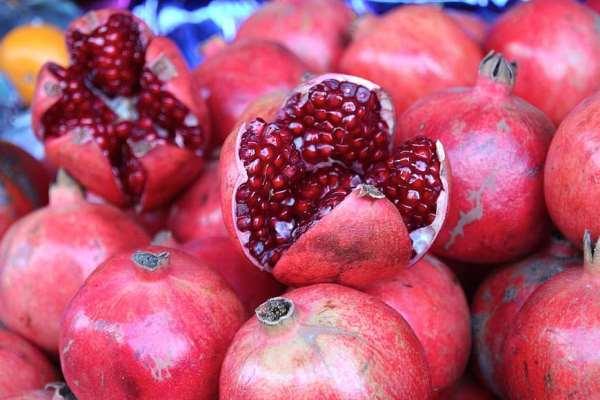 cara budidaya buah delima di pot dan polybag agar cepat berbuah banyak dan subur