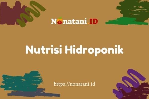nutrisi hidroponik