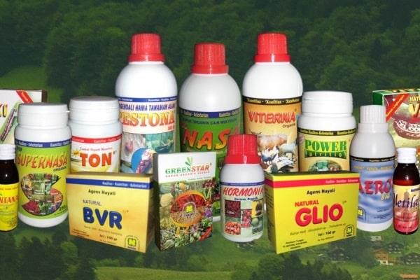 pupuk nasa untuk tanaman cabe buah padi