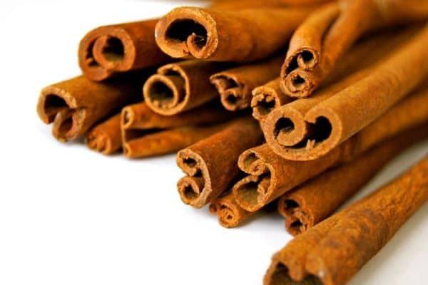 cara budidaya tanaman kayu manis