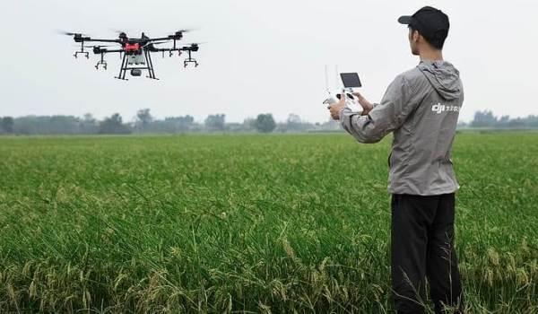 aplikasi sms harga komoditas hasil pertanian